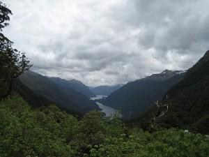fiordland2